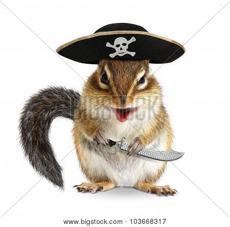 Funny Animal Pirate, Chipmunk With Filibuster Hat And Sabre