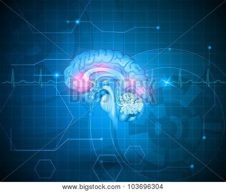 Human Brain Treatment