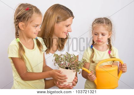 One Daughter Was Mad At My Mom And Another Daughter Watering Flowers