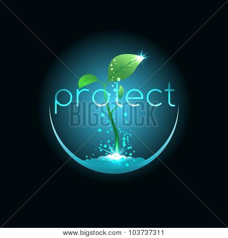 Protect For Seedling