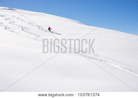 Freeriding On Fresh Powder Snow