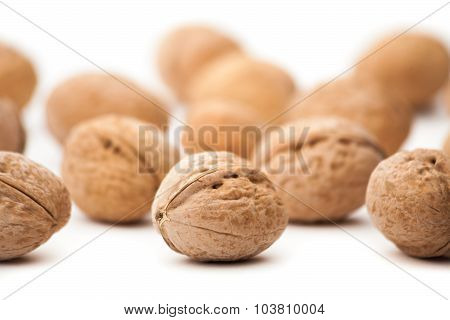 Walnut (Juglans regia) cracked on the white background poster