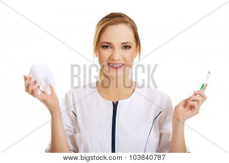 Young dentist woman with toothbrush and tooth model. poster
