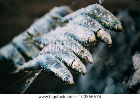 Espetos - skewer with sardines fish in fire. Spanish cuisine