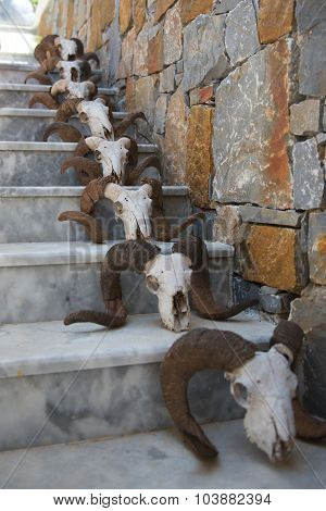 Staircase Decorated With Skulls