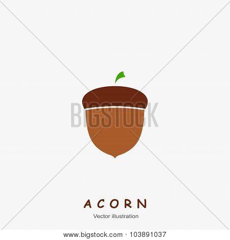 Image of autumn Acorn. Vector illustration.