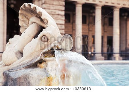 Fountain With Dolphin Sculpture. Italy, Rome