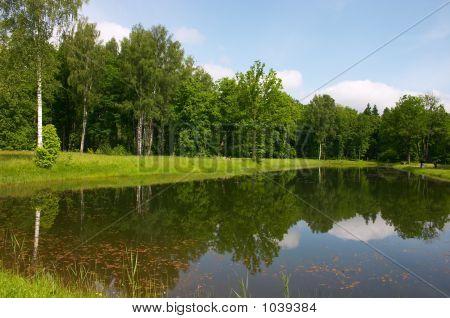 Pond Mirror