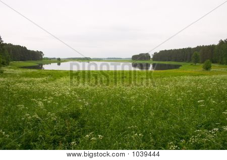 Meadow And Lagoon