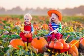 Little girl and boy picking pumpkins on Halloween pumpkin patch. Children playing in field of squash. Kids pick ripe vegetables on a farm in Thanksgiving holiday season. Family having fun in autumn. poster