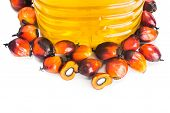 Refined palm oil in bottle with fresh oil palm fruits poster