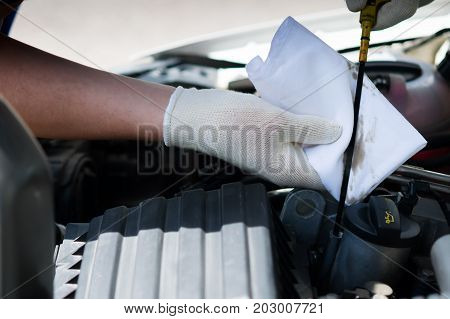 Master wipes the dipstick to check the oil in the car with a white rag