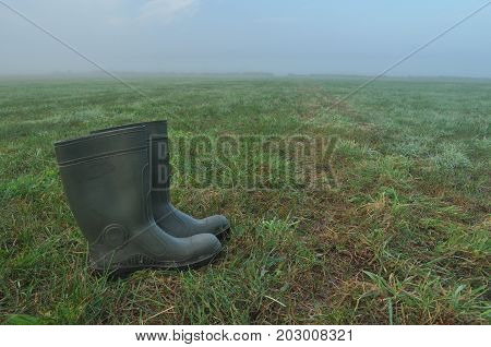 Rain boots rubber boots standing on a wet meadow. Fog in the morning