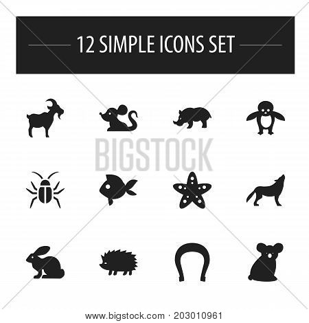 Set Of 12 Editable Zoology Icons. Includes Symbols Such As Wolf, Turbot, Rhino And More