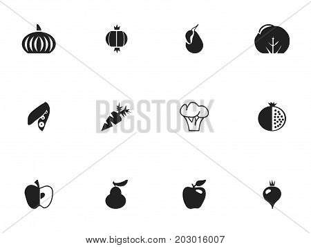 Set Of 12 Editable Fruits Icons. Includes Symbols Such As Duchess, Root Vegetable, Avocado And More
