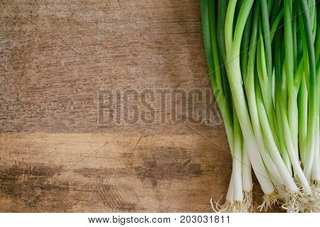 Fresh spring onion on wood table. Close up scallions or spring onion on wood plank in top view flat lay with copy space.