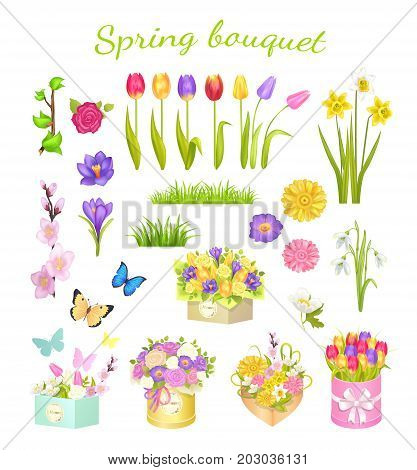 Concept of beautiful spring bouquet isolated on white. Vector illustration of purple primroses, flowering branch, colored tulips and roses, flying butterflies, daffodils and snowdrops, cardboard boxes