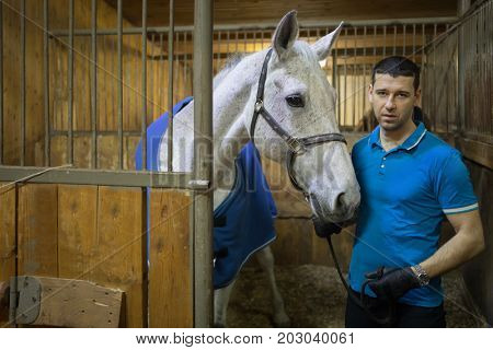 Handsome man in gloves and white horse in harness are in stable