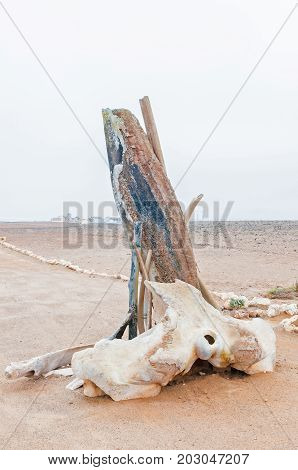 Parts of a whale skeleton at Cape Cross on the Skeleton Coast of Namibia