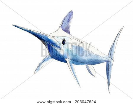 Watercolor swordfish blue marlin hand-drawn illustration isolated on white background.