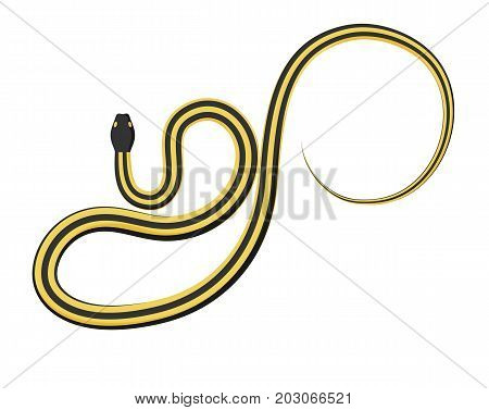 Curved slither ribbon or garter snake top view icon. Creeping yellow with black stripes snake flat vector isolated on white. Crawling nonpoisonous reptile illustration for wild nature concepts, zoo ad