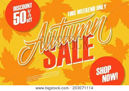 Autumn Sale. This weekend special offer banner with hand lettering and autumn leaves for seasonal shopping. Discount up to 50% off. Shop now! Vector illustration.