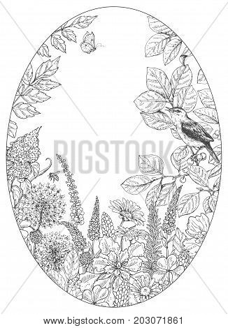 Hand drawn floral elements. Black and white flowers plants insects and sitting songbird on branch. Monochrome vector sketch. Oval frame. Space for text.