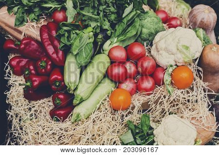 Autumn harvest of vegetables. Organic farmers food market place. Fresh products - vegetables on sale at the local market, close-up, top view
