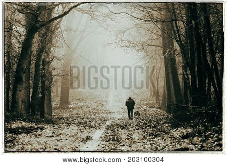 Black And White Photo Of Man With Dog Walking On Lane In Misty Autumn Forest.