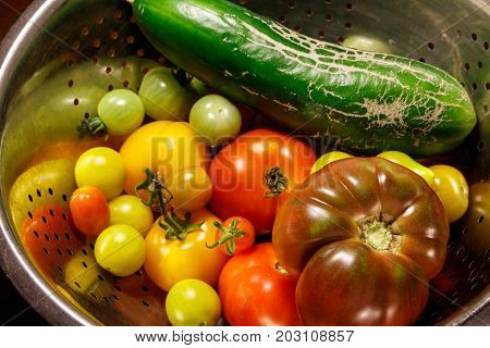 Colorful home growing autumn vegetables at Vancouver BC Canada