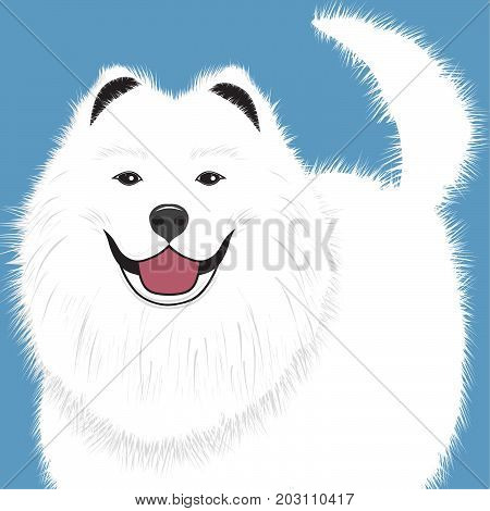 Dog samoyed buddy puppy pet vector illustration