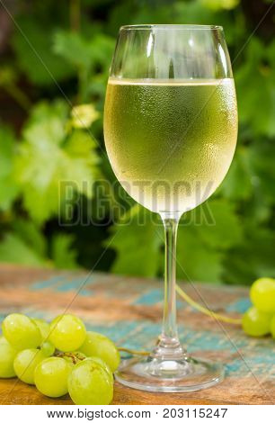 Wine Glass With Ice Cold White Wine, Outdoor Terrace, Wine Tasting In Sunny Day, Green Vineyard Gard