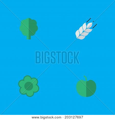 Elements Corn, Fruit, Wood And Other Synonyms Wood, Forest And Flower.  Vector Illustration Set Of Simple Horticulture Icons.