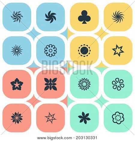 Elements Blossoming, Pattern, Marguerite And Other Synonyms Clover, Marguerite And Leaf.  Vector Illustration Set Of Simple  Icons.