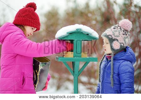 Two Adorable Sisters Feeding Birds On Chilly Winter Day In City Park. Children Helping Birds At Wint