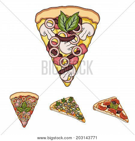 A slice of pizza with different ingredients. Different pizza set collection icons in cartoon style vector symbol stock illustration .