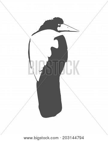 Illustration of the black raven bird. Vector art.