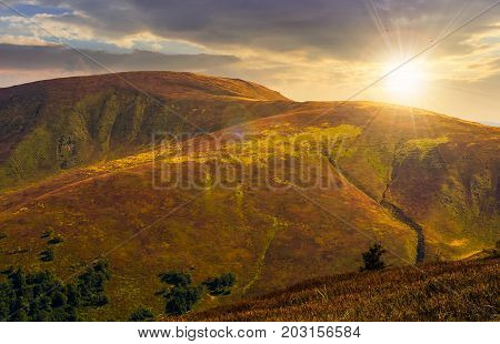 grassy meadow of a hillside on top of mountain ridge. beautiful summer landscape with blue sky and a cloud at sunset