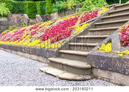 Old stone stairs in Glasgow country Pollok Park blossoming garden. Summertime outdoors.