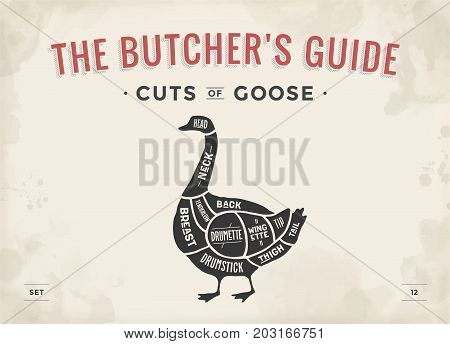 Cut of meat set. Poster Butcher diagram, scheme - Goose. Vintage typographic hand-drawn goose silhouette for butcher shop, restaurant menu, graphic design. Meat, poultry theme. Vector Illustration