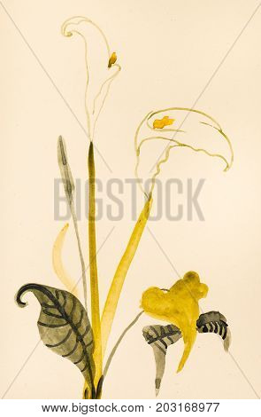 Calla Flower Hand Painted On Cream Colored Paper