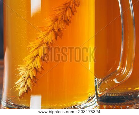 The Spikelet Of Barley In Beer Mug Of Light Beer. Beautiful Background Of The Oktoberfest