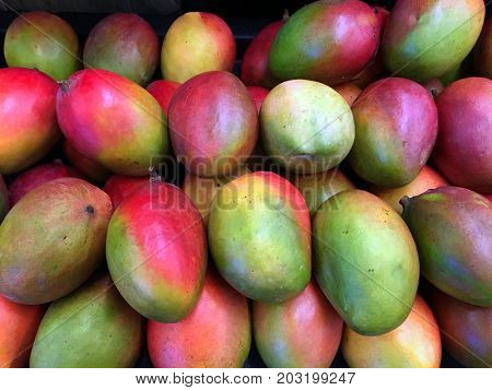 Beautiful Stacked Mangos for sale