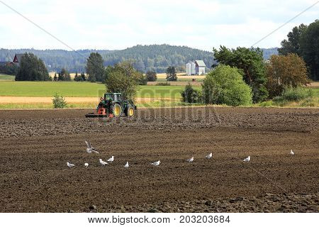 SALO FINLAND - AUGUST 20 2017: Farmer cultivates field with John Deere tractor and harrow on a beautiful day of early autumn with seagulls on tillage in the foreground.