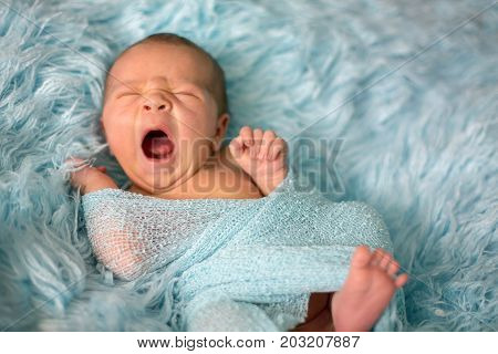 Happy Smiling Newborn Baby In Wrap, Sleeping Happily In Cozy Fur