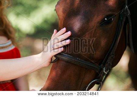 Summer day on the farm. Young woman with ring on finger caress horse.