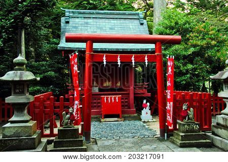 A small shrine in a forest with a torii gate.