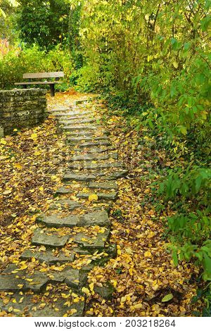 Fallen leaves accumulate on steps of stone stairs season autumn