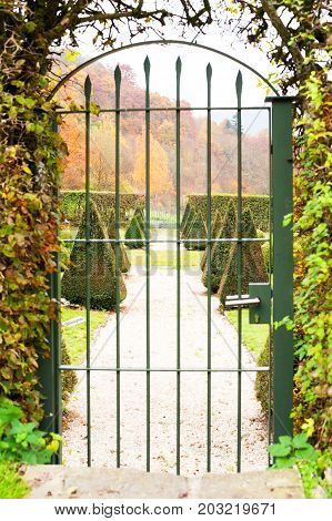 Triangle shaped topiary green trees in old ornamental garden beyond metal ancient gate. Front view. Burresheim Castle in autumn Germany. Outdoors vertical image