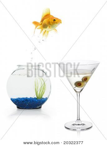 A goldfish leaping from a fishbowl into a martini.